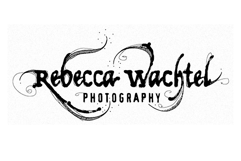 Rebecca Wachtel