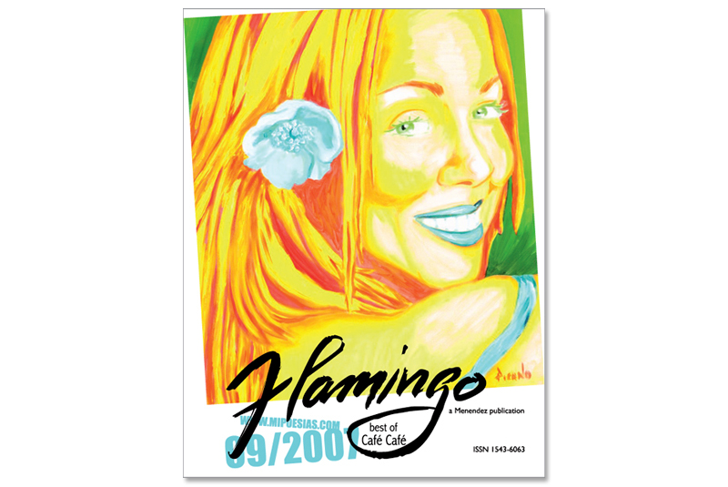 Flamingo cover
